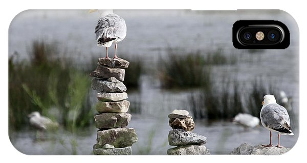 IPhone Case featuring the photograph Perched On A Rock Cairn by Jackson Pearson