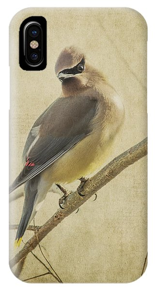 Perching Waxwing IPhone Case