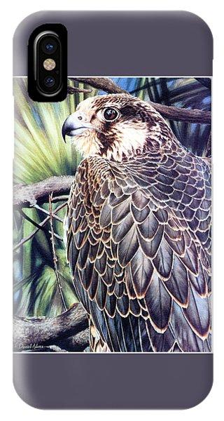 Da138 Peregrine Falcon By Daniel Adams IPhone Case