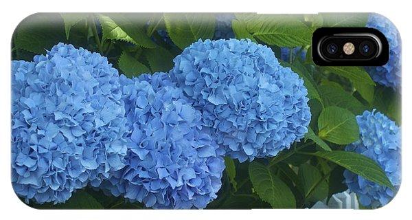 Perfect Blue Hydrangeas  IPhone Case