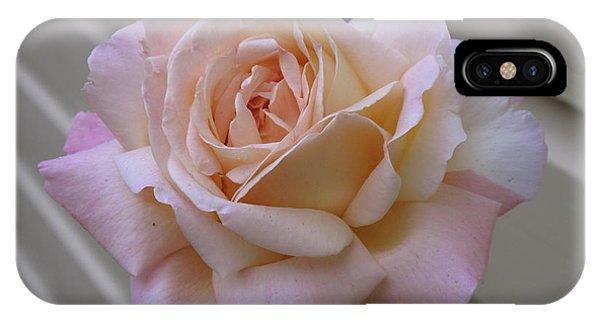 iPhone Case - Perfect Blushing October Rose by Barbara McDevitt