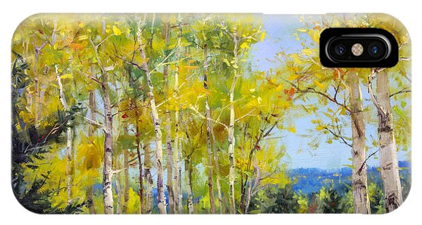 Perfect Day For A Hike Phone Case by Bill Inman