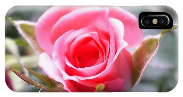 Perfect Rosebud In True Color IPhone Case