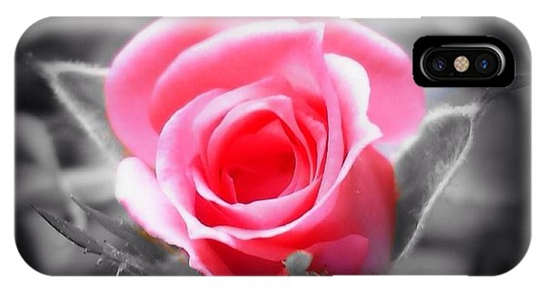 Perfect Rosebud In Black IPhone Case