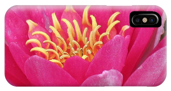 Perry's Fire Opal Water Lily IPhone Case