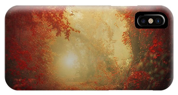 Dreamy iPhone Case - Personal Journey by Ildiko Neer