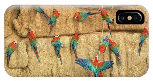 Scarlet iPhone Case - Peru, Amazon River Basin, Madre De Dios by Jaynes Gallery