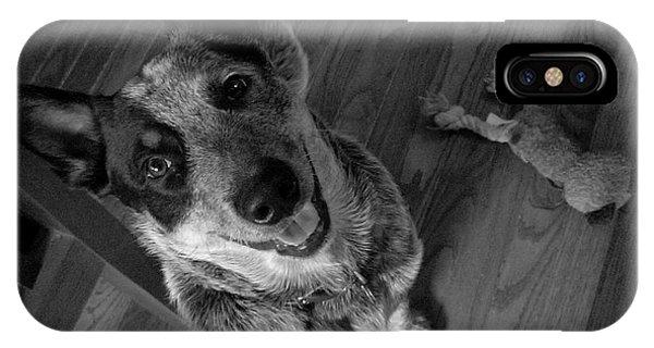 Pet Portrait - Forrest IPhone Case