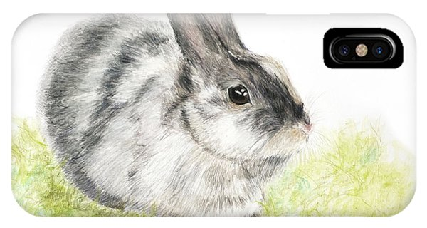 Pet Rabbit Gray Pastel IPhone Case