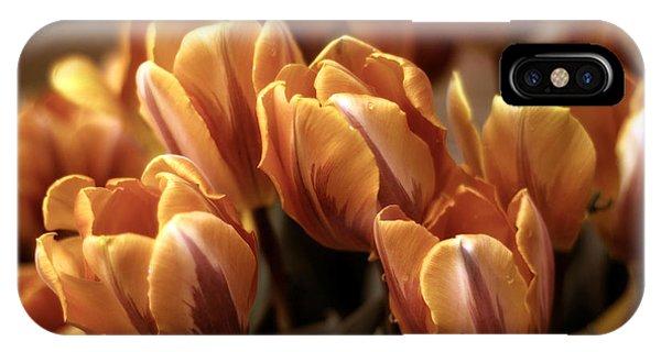 Golden Gardens iPhone Case - Golden Delight by Jessica Jenney