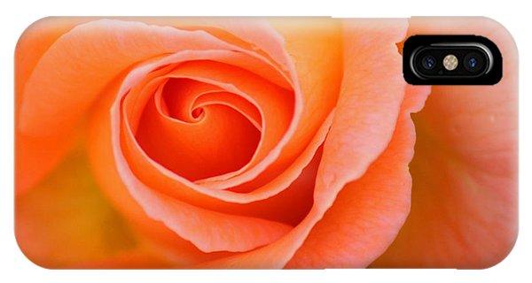 Petals Of Peach IPhone Case