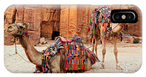 Petra Camels IPhone Case