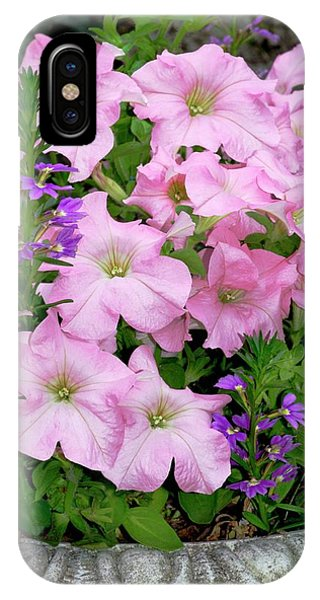 Petunia X Hybrida 'pink Lady' Phone Case by Brian Gadsby/science Photo Library