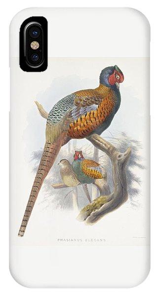 Phasianus Elegans Elegant Pheasant IPhone Case