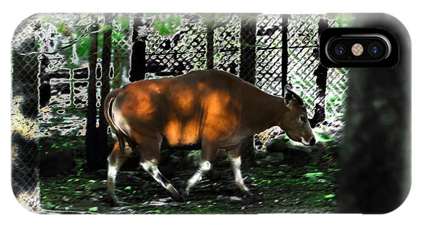 Phenomena Of Banteng Walk IPhone Case