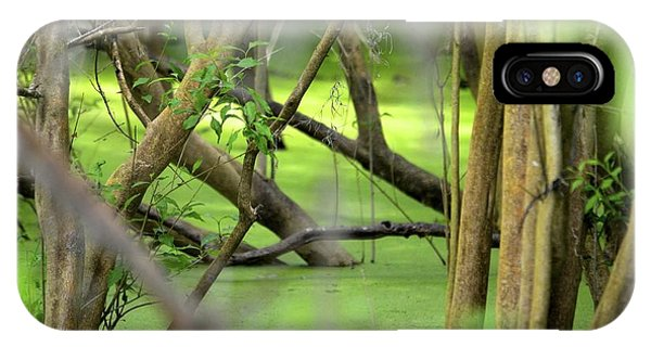 Green Water At Brazos Bend State Park In Texas IPhone Case
