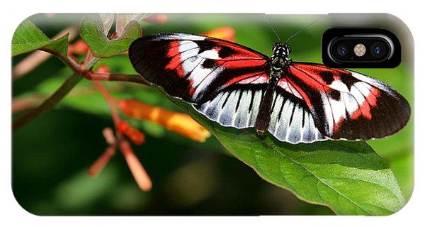 Piano Key Butterfly On Fire Bush IPhone Case