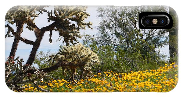 IPhone Case featuring the photograph Picacho Peak Wild Flowers by Broderick Delaney
