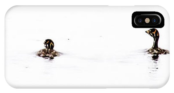 Pied-billed Grebe Babies IPhone Case
