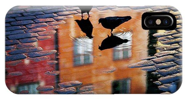 Pigeon iPhone Case - Pigeons by Allan Wallberg