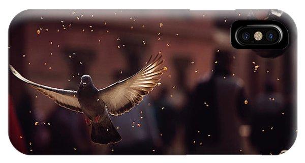 Grain iPhone Case - Pigeons In Patan Square, Kathmandu-nepal by Dan Mirica