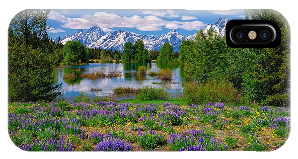 Pilgrim Creek Wildflowers IPhone Case