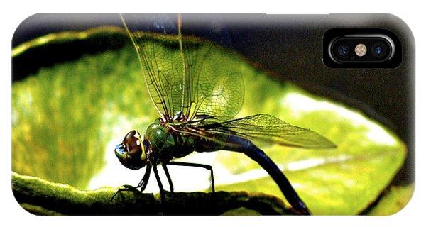 Pinao The Hawaiian Dragonfly IPhone Case