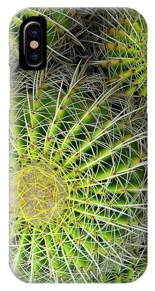 Pincushion Cactus  IPhone Case