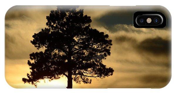 Pine At Sundown IPhone Case