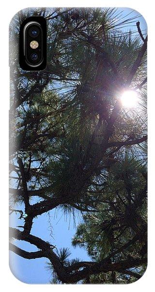 Pine Face With Sun Eye IPhone Case