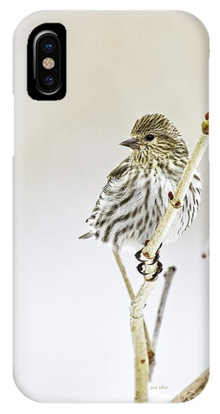 Pine Siskin IPhone Case