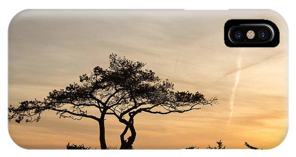 Pine Tree Portrait IPhone Case