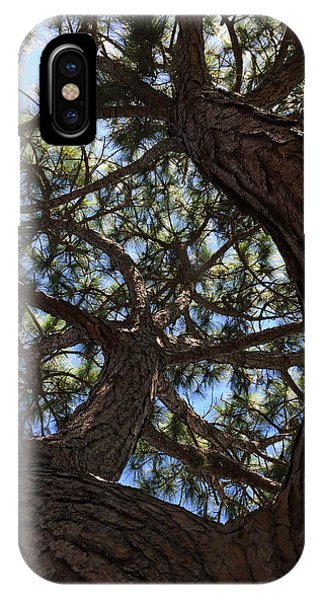 Pine Twist IPhone Case