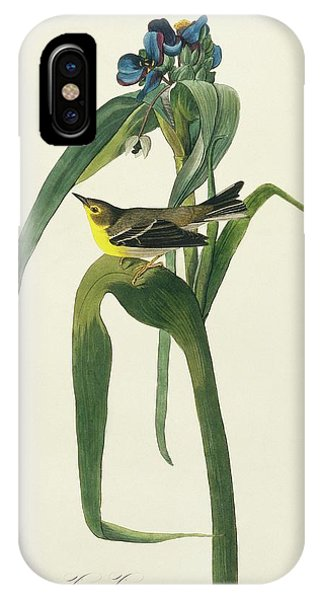 Pine Warbler Phone Case by Natural History Museum, London/science Photo Library