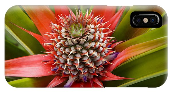 Pineapple iPhone Case - Pineapple Plant by Aged Pixel