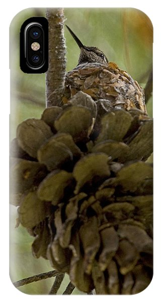 Pinecone Nest IPhone Case