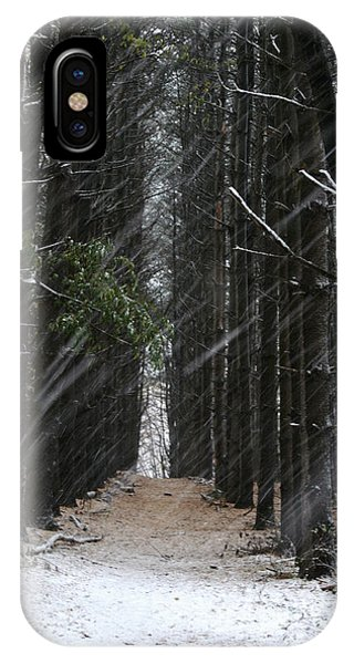 Pines In Snow IPhone Case