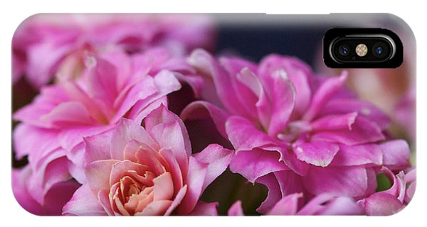 Pink And Blue II Phone Case by Pamela Gail Torres