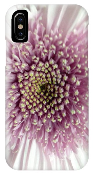 IPhone Case featuring the photograph Pink And White Chrysanthemum by Marian Palucci-Lonzetta