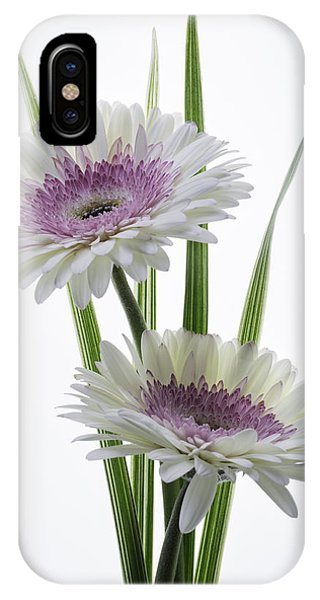 Pink And White Gerbera IPhone Case
