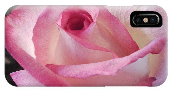 Pink And White Rose IPhone Case