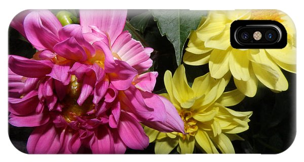 Pink And Yellow Dahlia's Opening No. Cc62 IPhone Case