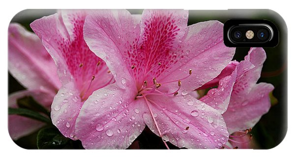 Pink Azalea IPhone Case