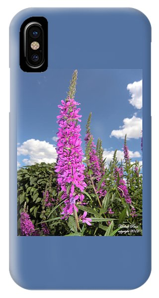 Pink Brilliance IPhone Case