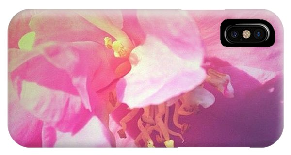Pink Camellia Vintique Edit IPhone Case