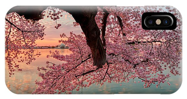 Pink Cherry Blossom Sunrise IPhone Case