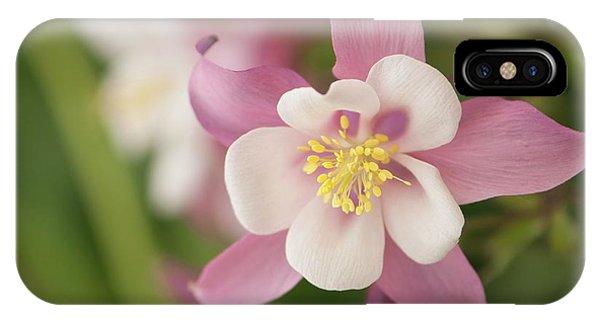 Aquilegia iPhone Case - Pink Columbine (aquilegia X Hybrida) Flowers by Maria Mosolova/science Photo Library