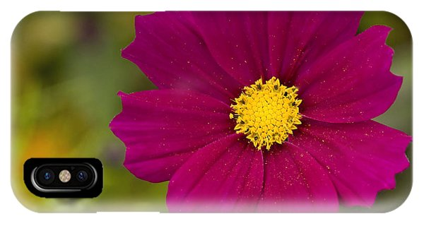 Pink Cosmos 3 IPhone Case