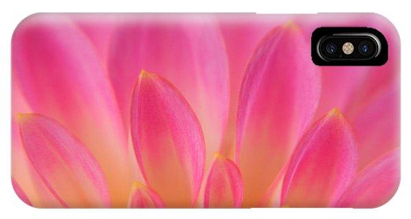 Pink Dahlia Close-up IPhone Case