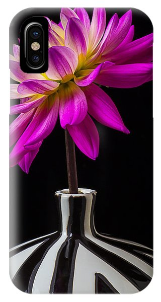 Pink iPhone Case - Pink Dahlia In Striped Vase by Garry Gay